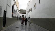 marokas-2016m276