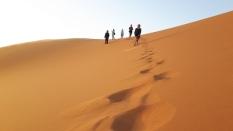 Marokas18m313